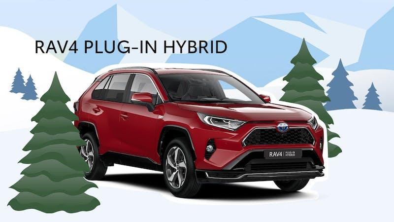 Hybrider i vinterland