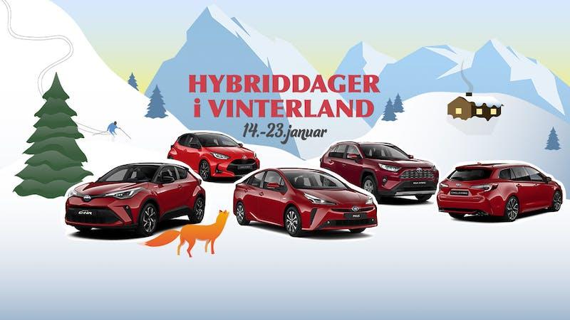Hybriddager i vinterland